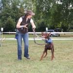 sandrine otsmane educateur canin et comportementaliste chien