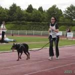 footing avec son chien