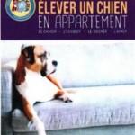elever un chien en appartement