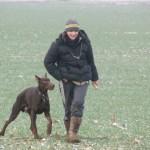 pistage canin 77, 78, 91, 92, 93, 94, 95, 75, province, ile de france, région parisienne, club de pistage canin
