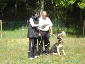 cours d'éducation canine 77, 78, 91, 92, 93, 94, 95, 75